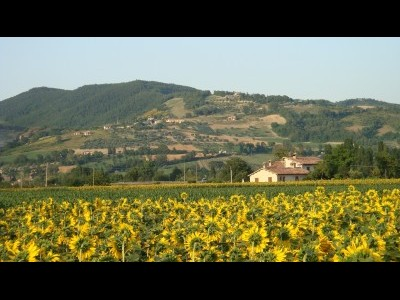 Bed and Breakfast Fontecese