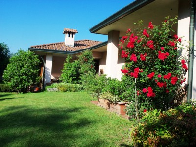 Bed and Breakfast Il Ciliegio Fiorito
