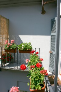 Bed and Breakfast Milano Bella