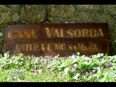 Residence Casa in Valsorda