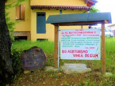 Agritourisme Vinea Regum