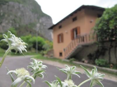 Bed and Breakfast Antico Borgo