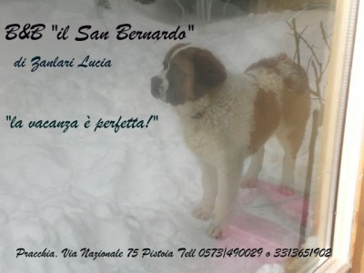 Bed and Breakfast Il san Bernardo